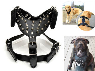 Tough Guy Harness