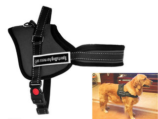 Dog Harness Heavy Duty