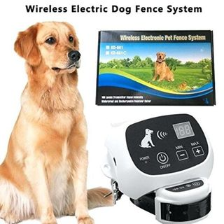 KD661 Wireless Pet Fence