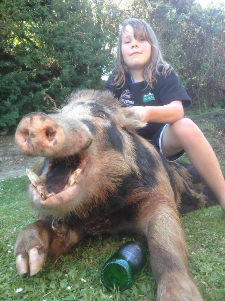 Caitlin frost. It was a 182 pound akatoa boar.